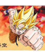 Goku Power Punch Apple iPod Skin