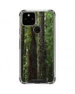 Evergreen Forest Google Pixel 5 Clear Case