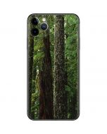 Evergreen Forest iPhone 11 Pro Max Skin