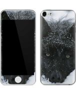 Gray Wolf Resting In Deep Snow Apple iPod Skin