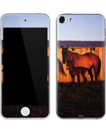 Horses at Sunset In Montana Apple iPod Skin