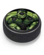 Hulk is Angry Amazon Echo Dot Skin