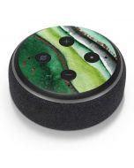 Kiwi Watercolor Geode Amazon Echo Dot Skin