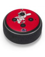 Large Vintage Reds Amazon Echo Dot Skin