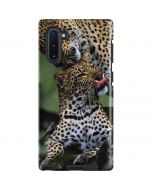 Mother Leopard Grooms Her Cub Galaxy Note 10 Pro Case