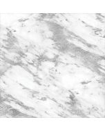 Silver Marble Asus X202 Skin
