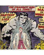 Hulk Joe Fixit PS4 Slim Bundle Skin