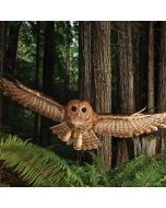 Northern Spotted Owl Dell XPS Skin