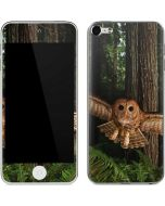 Northern Spotted Owl Apple iPod Skin