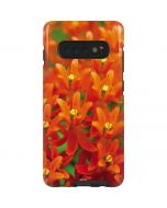 Butterfly Weed of Rich Orange Color Galaxy S10 Plus Pro Case