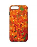 Butterfly Weed of Rich Orange Color iPhone 7 Plus Pro Case