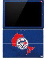 Toronto Blue Jays Home Turf Surface Pro (2017) Skin