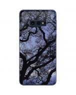 Tree Branches Galaxy S10e Skin