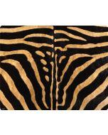 Zebra Amazon Echo Skin