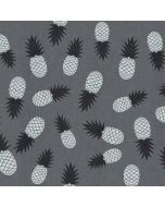 Black and White Pineapples Amazon Echo Skin