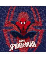 Spider-Man Web Dell XPS Skin