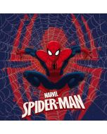 Spider-Man Web Yoga 910 2-in-1 14in Touch-Screen Skin