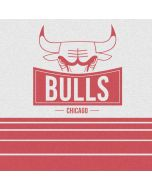 Chicago Bulls Static PS4 Slim Bundle Skin