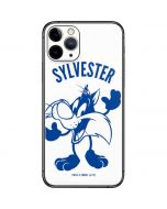 Sylvester the Cat Big Head iPhone 11 Pro Skin