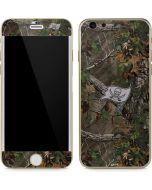 Tampa Bay Buccaneers Realtree Xtra Green Camo iPhone 6/6s Skin