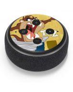 Tasmanian Devil Swirl Cream Amazon Echo Dot Skin
