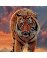 Rising Tiger Wii Remote Controller Skin