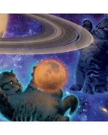 Cosmic Kittens Asus X202 Skin