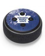 Toronto Maple Leafs Frozen Amazon Echo Dot Skin