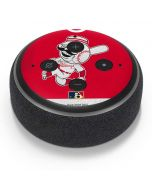 Vintage Reds Amazon Echo Dot Skin