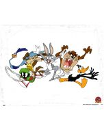 Looney Tunes Chase Otterbox Defender Galaxy Skin